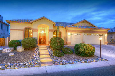 Pima County, Pinal County Single Family Home For Sale: 11009 N Mountain Breeze Drive