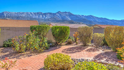 Pima County, Pinal County Single Family Home For Sale: 38105 S Elbow Bend Drive