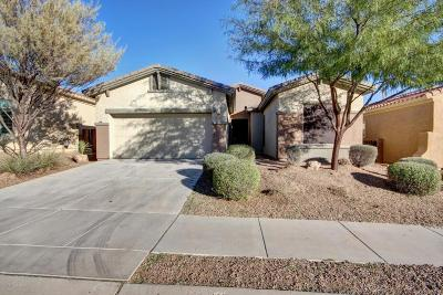 Marana Single Family Home For Sale: 12596 N New Reflection Drive