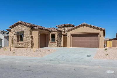 Pima County, Pinal County Single Family Home For Sale: 11875 N Renoir Way