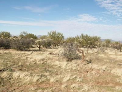 Tucson Residential Lots & Land For Sale: 14876 W Lost Valley Loop