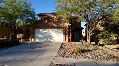 Pima County, Pinal County Single Family Home For Sale: 706 W Emerald Key Drive