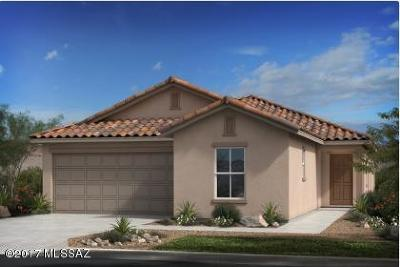 Pima County, Pinal County Single Family Home For Sale: 2186 W Ephesus Court