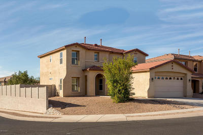 Pima County Single Family Home For Sale: 9479 N Sammy Avenue