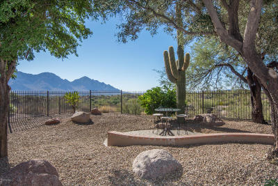 Pima County Single Family Home For Sale: 13909 N Desert Butte Drive