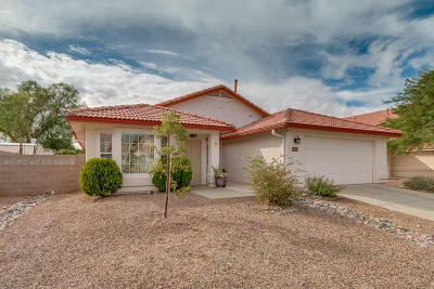 Tucson Single Family Home For Sale: 7656 S Sugarberry Drive