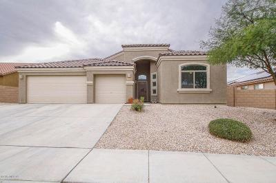 Pima County Single Family Home For Sale: 7564 S Ocean Port Drive