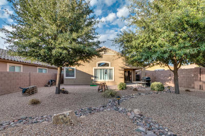 Pima County, Pinal County Single Family Home For Sale: 828 E Cottonwood Canyon Place