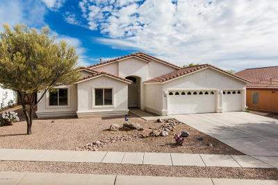 Pima County Single Family Home For Sale: 3492 N Reed Basin Place