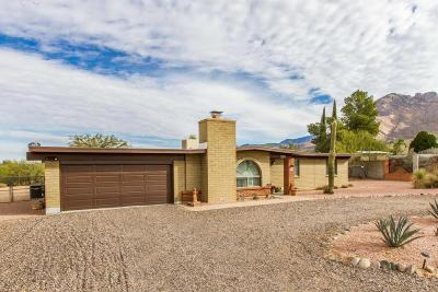 Tucson Single Family Home For Sale: 718 W Placita De La Poza