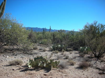 Tucson Residential Lots & Land Active Contingent: 12220 E Prince Road