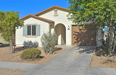 Pima County, Pinal County Single Family Home For Sale: 8270 W Anser Loop