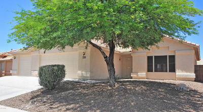 Pima County Single Family Home For Sale: 9805 E Golden Currant Drive