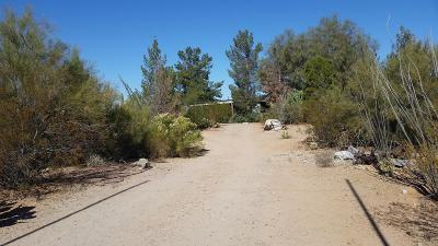 Pima County, Pinal County Manufactured Home For Sale: 12100 W Mile Wide Road