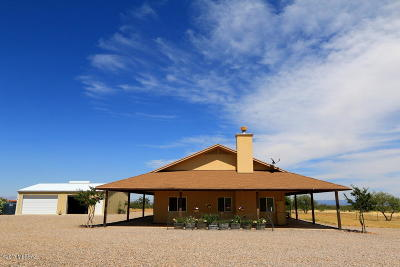 Single Family Home For Sale: 887 W Mule Lane