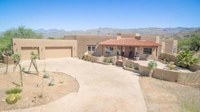 Tucson Single Family Home For Sale: 12751 E Camino Ancho
