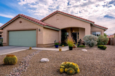 Tucson Single Family Home For Sale: 8748 N Walter Hagen Drive