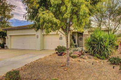 Sahuarita Single Family Home For Sale: 15083 S Placita Rancho Verano