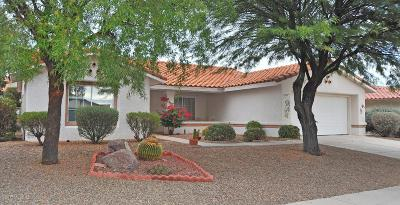 Oro Valley Single Family Home For Sale: 987 E Seven Palms Drive