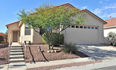 Tucson Single Family Home For Sale: 11175 N Desert Flower Drive