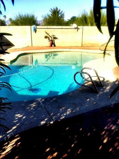Tucson Single Family Home For Sale: 2821 S Calle Cordova