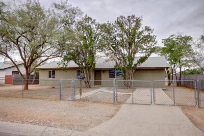 Tucson Single Family Home For Sale: 1312 S Alamo Avenue