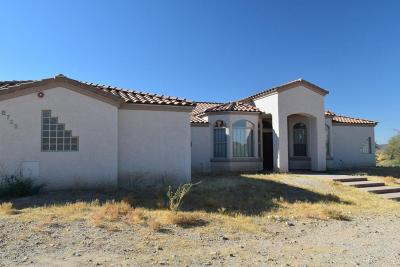 Single Family Home For Sale: 8725 N Camino De Oeste