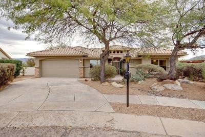 Tucson Single Family Home For Sale: 10793 E Grass Spring Place