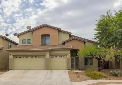 Tucson Single Family Home For Sale: 10654 E Avalon Park Street