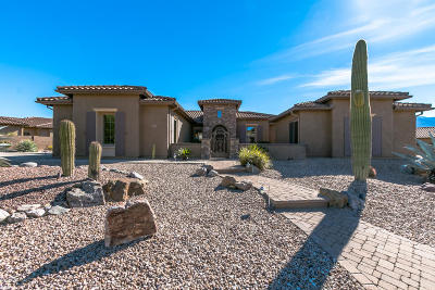 Tucson Single Family Home For Sale: 35843 S Desert Sun Drive