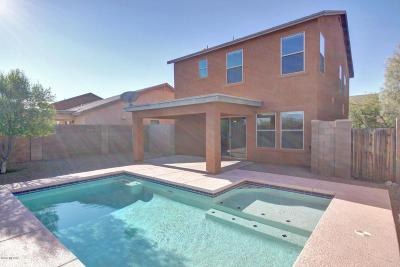 Tucson Single Family Home For Sale: 7001 S Ladys Thumb Lane