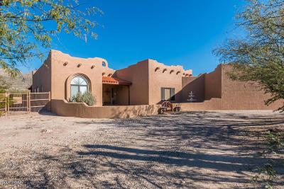 Tucson Single Family Home For Sale: 12025 E Prospect Lane
