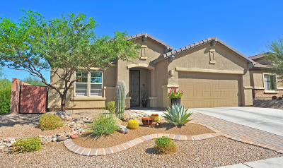 Vail Single Family Home For Sale: 13987 E Huppenthal Boulevard