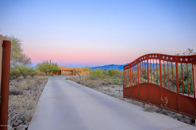 Tucson Single Family Home For Sale: 13804 N Como Drive