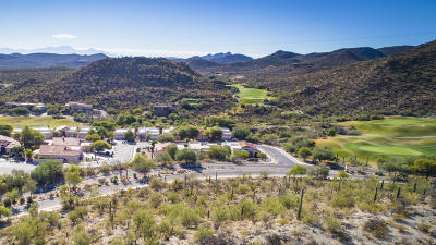 Pima County Single Family Home For Sale: 3340 W Flowering Cactus Court
