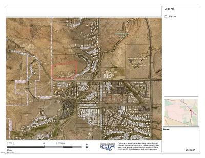 Tucson Residential Lots & Land For Sale: 3135-3295 W New Star Place W