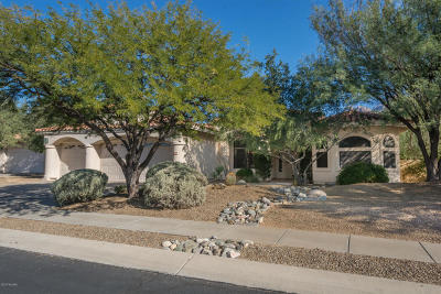 Oro Valley Single Family Home For Sale: 9768 N Golden Sun Drive