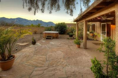 Oro Valley Single Family Home Active Contingent: 13224 N Lost Artifact Lane
