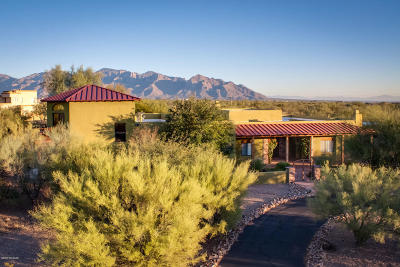 Tucson Single Family Home For Sale: 3420 W Moore Road
