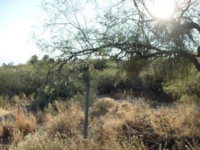 Tucson Residential Lots & Land For Sale: 16621 N Elkins Road