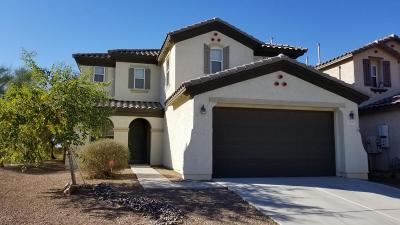 Tucson Single Family Home For Sale: 4872 E Desert Thorn Drive
