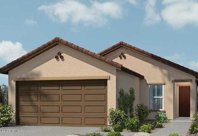Single Family Home Active Contingent: 7581 E Kinnison Wash Loop