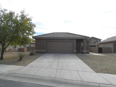 Marana Single Family Home For Sale: 11323 W Burning Sage Street
