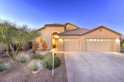 Marana Single Family Home For Sale: 5104 W New Shadow Way