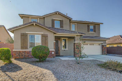 Marana Single Family Home For Sale: 5435 W Bajada Drive