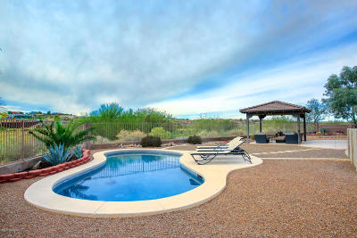 Vail Single Family Home Active Contingent: 11076 S Camino San Clemente