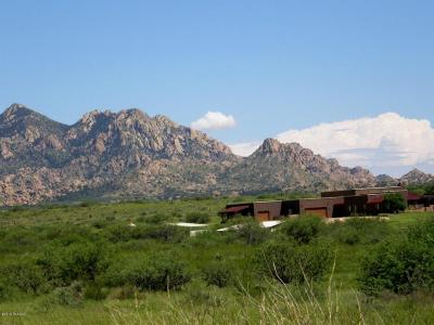 Cochise County Single Family Home For Sale: 6851 E Horse Ranch Road