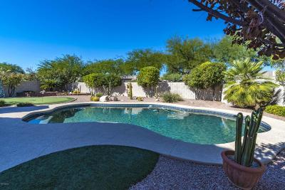 Oro Valley Single Family Home For Sale: 12961 N Meadview Way
