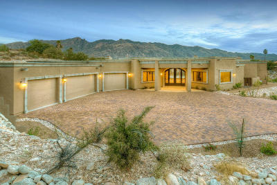 Tucson Single Family Home For Sale: 5115 N Via De La Granja