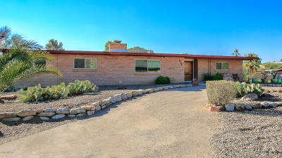 Tucson Single Family Home For Sale: 8250 E Rawhide Trail